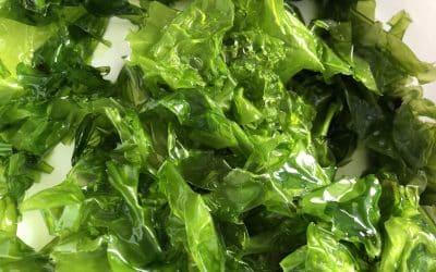 Les surprenants bienfaits des algues pour notre santé